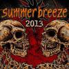 Bild zum Artikel Summer Breeze 2013 - Die perfekte Festivaldosis
