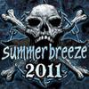Bild zum Artikel Summer Breeze 2011 - Zwischen Sommer und steifer Brise