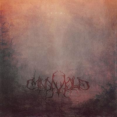 Mind Mold EP